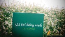 tiểu thuyết bắt trẻ đồng xanh